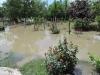 poplavajarak13