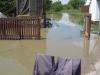 poplavajarak17
