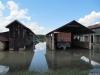 poplavajarak22
