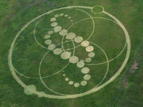 U živu su pronađeni krugovi u čijem centru je ležao Saša. Zemljoradnici tvrde da neće tužiti državu zbog ovih krugova.